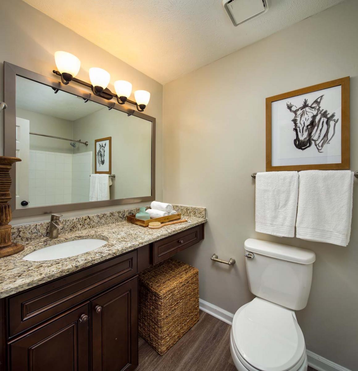 Hampton Woods Apartments: Calibre Woods